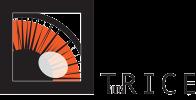 TriceFilms